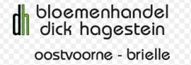http://www.dickhagestein.eu/